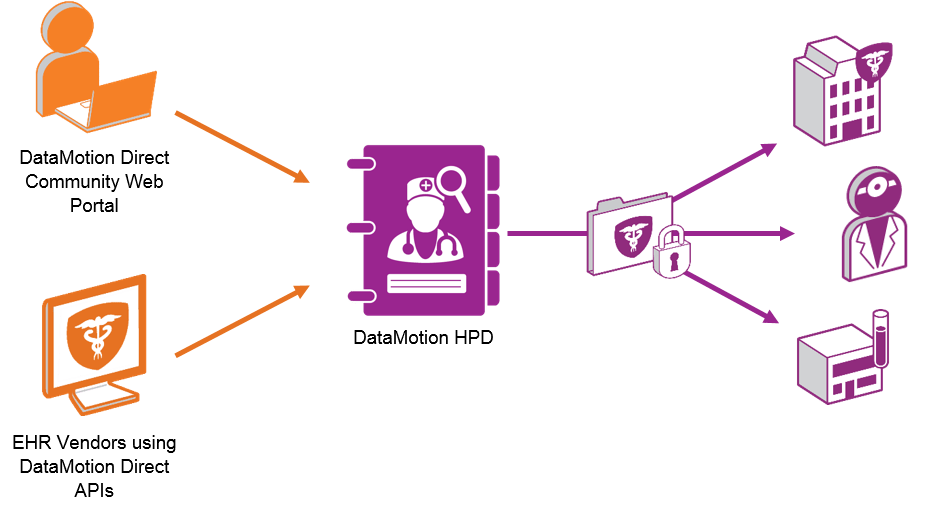 Infographic of Data Motion HPD